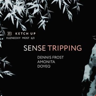 Sense Tripping at Ketch Up