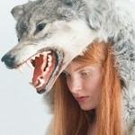 lazywolf258