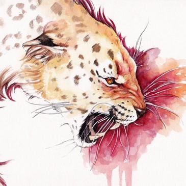 redleopard512